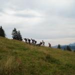Trekking Alp Gueteregg 2013 (32)